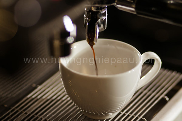 cafe latte cần chiết xuất espresso
