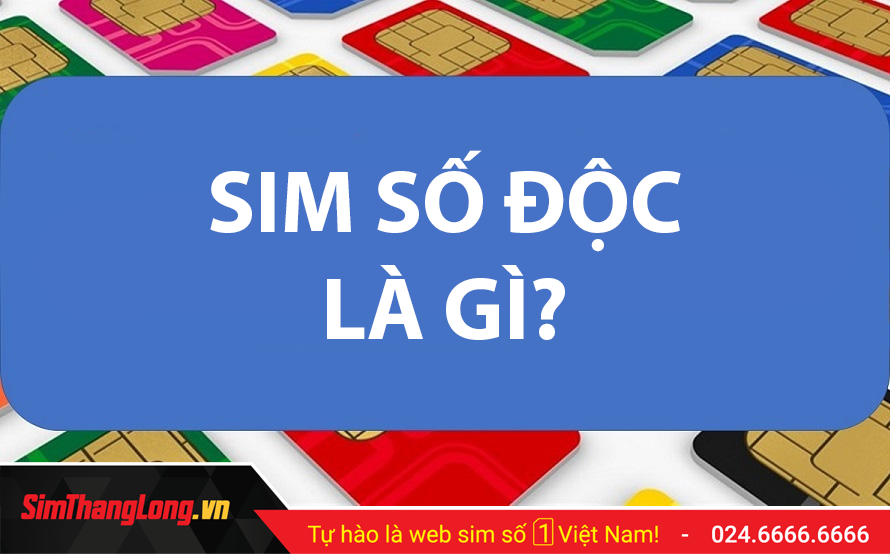 SIM-SO-DOC